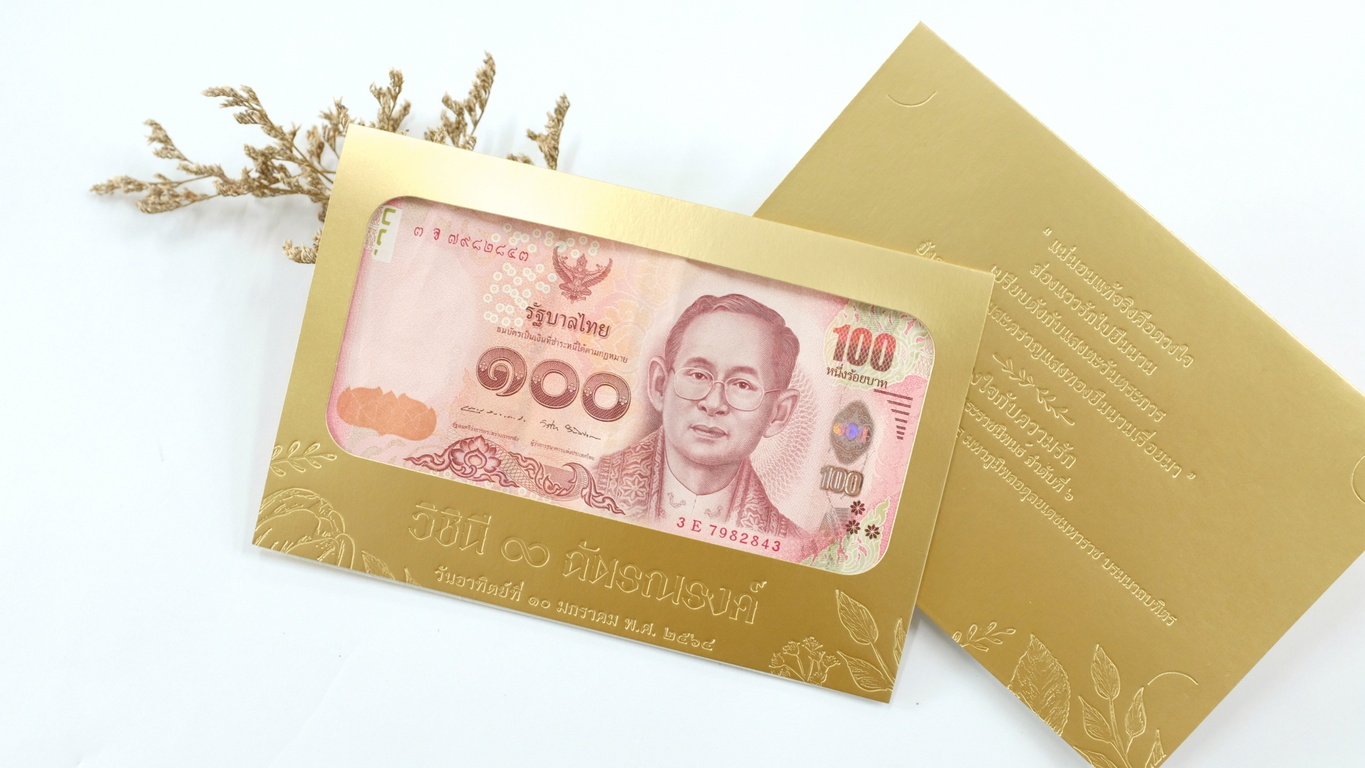 Portfolio Premium BankNote Case for 100Baht Banknote